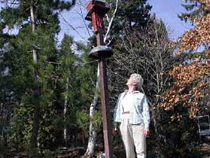 Alison Clarke's bird feeder is more than eight feet tall, and one neighborhood bear can touch it with his nose. Bears have left claw marks in the wooden post.  (MPR Photo/Chris Julin)