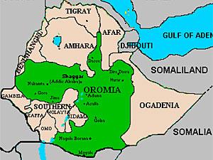 MPR: Oromo immigrants strive to be heard